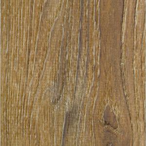 Balearic Oak
